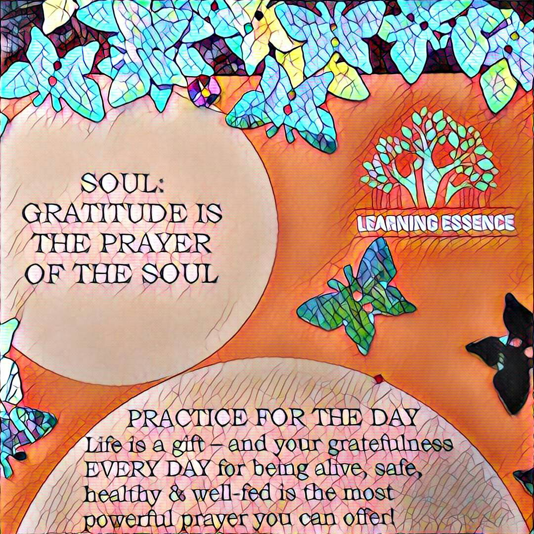 #NaBloPoMo: Day #21: Soul- Gratitude is the prayer of the soul