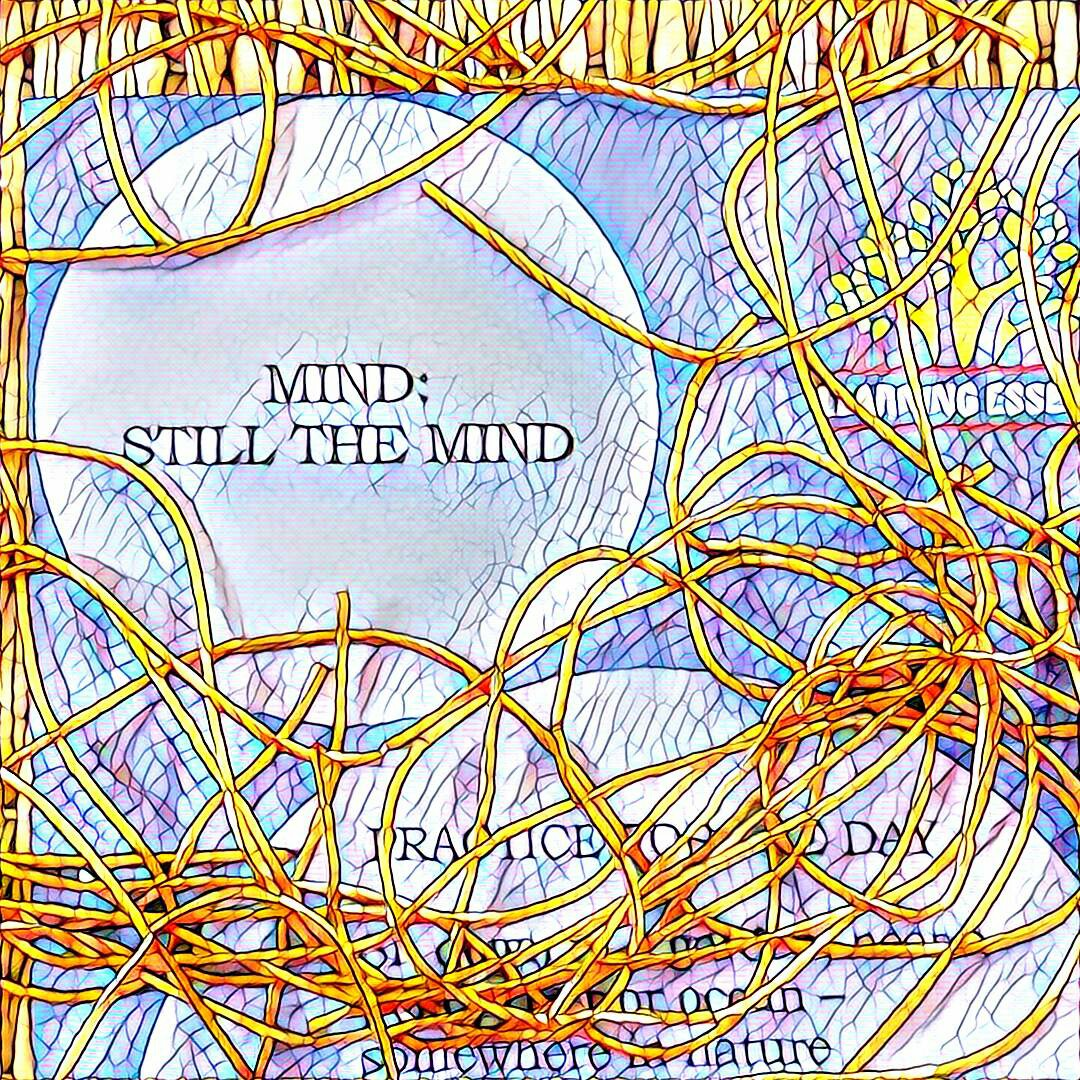 #NaBloPoMo: Day #29: Mind: Still the Mind
