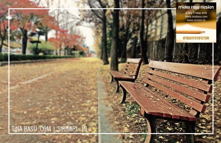 #FridayFotoFiction: Will she see him again ?