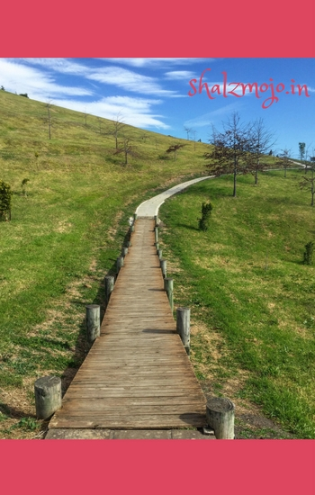 The Secret Road [ #MondayMusings ]