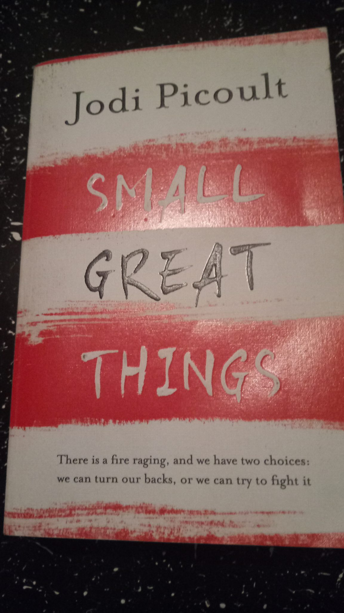 Small Great Things – a book review [ Guestpost ]